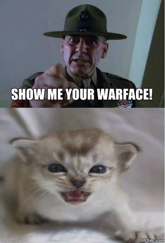 show-me-your-warface-meme-2015