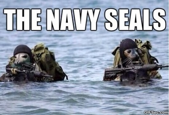 well-get-those-sharks-meme-2015