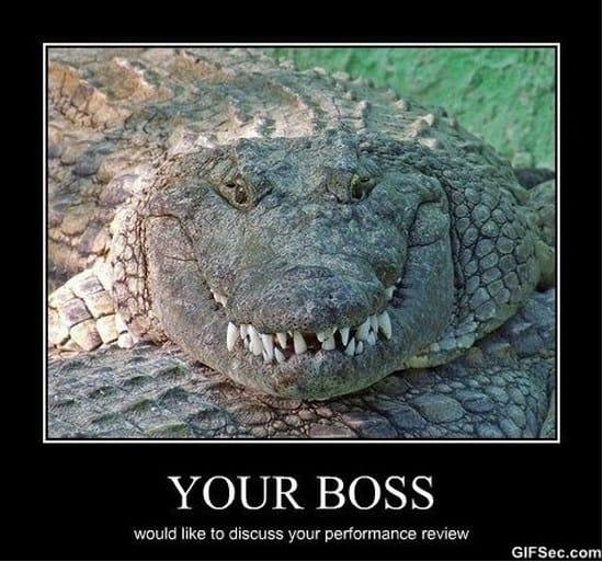 you-boss-meme-2015