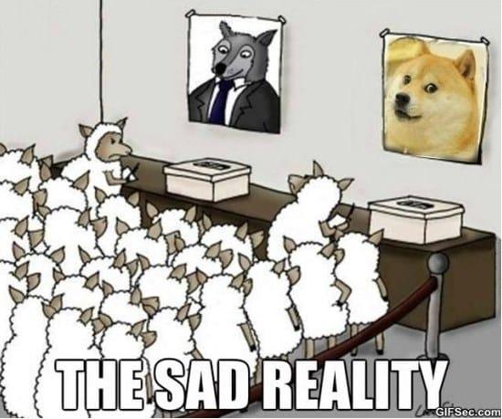 reality-meme