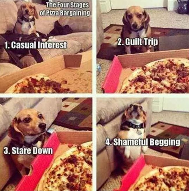 pizza-bargaining