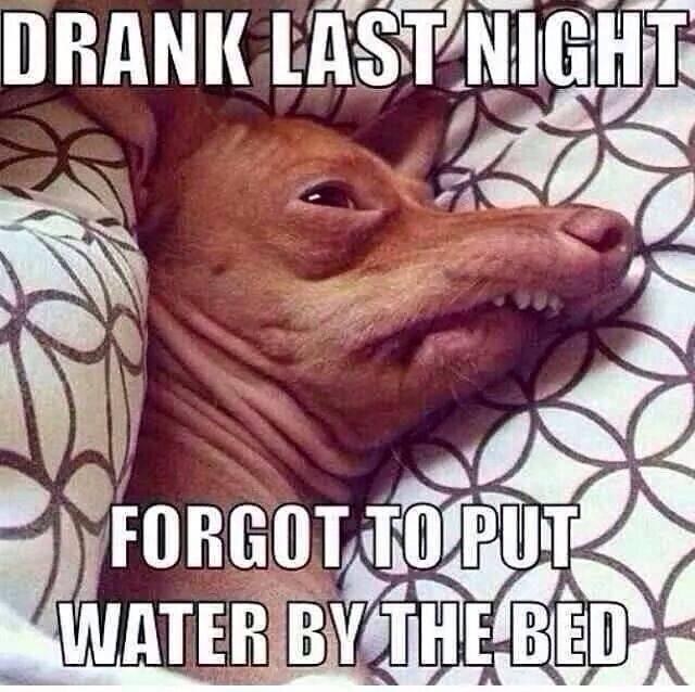 drank-last-night