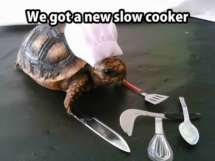 a-slow-cooker