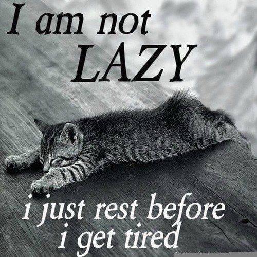 im-not-lazy