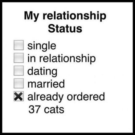 my-relationship-status