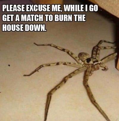 please-excuse-me