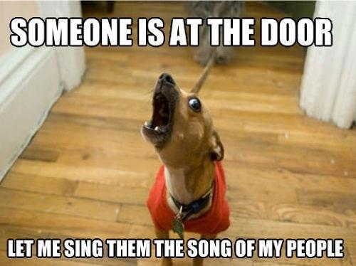someone-is-at-the-door