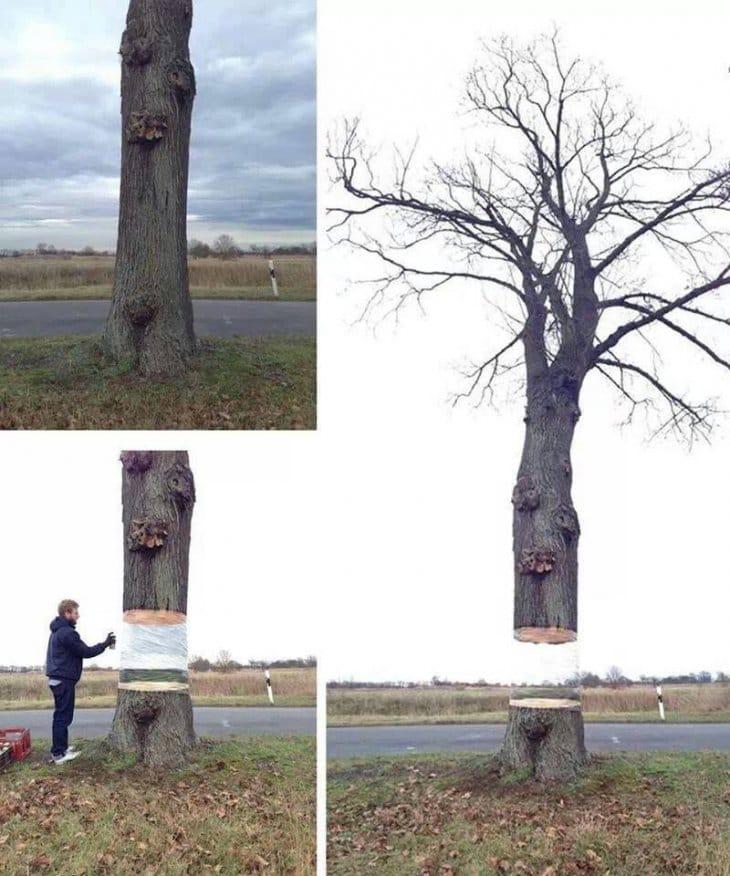 tree-painting-idea