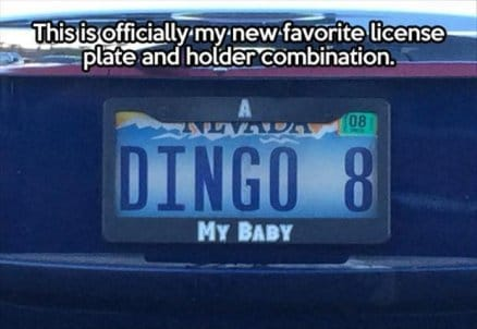 favorite-license-plate