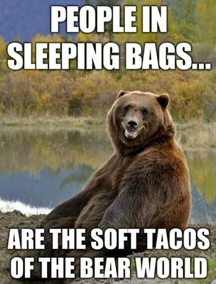 people-in-sleeping-bags