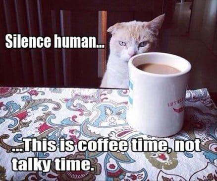 silence-human