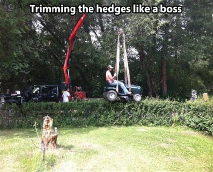 trimming-the-hedges-like-a-boss