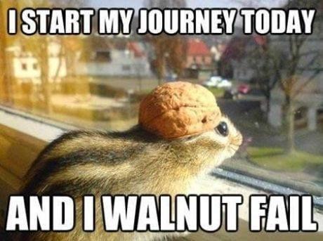 i-walnut-fail