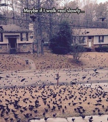 May be if I walk real slowly