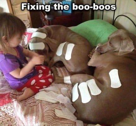 fixing-the-boo-boos