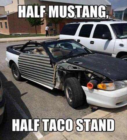 half-mustang