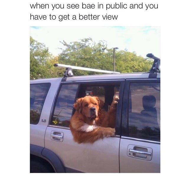 seeing-bae-in-public