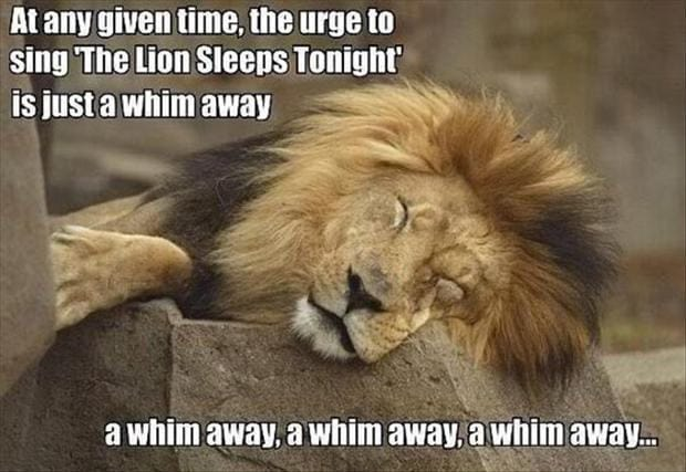 the-urge-to-sing-the-lion-sleeeps-tonight