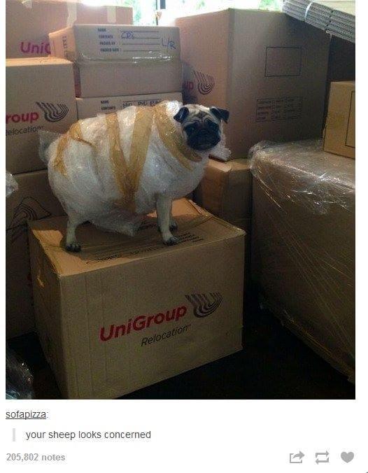 ultra-safe-packaging