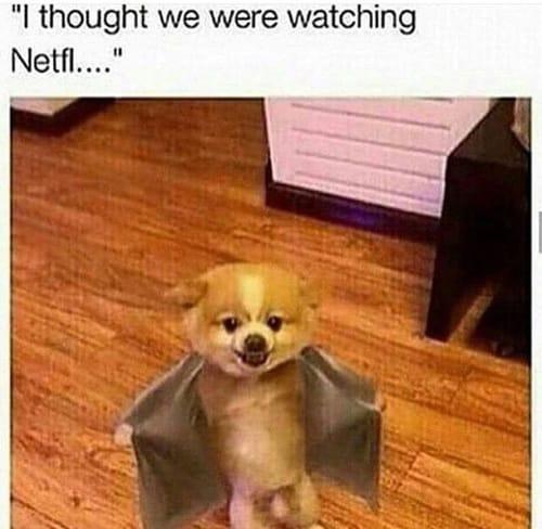 i-thought-we-were-watching-netflix