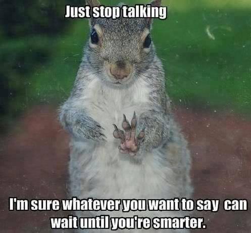 just-stop-talking