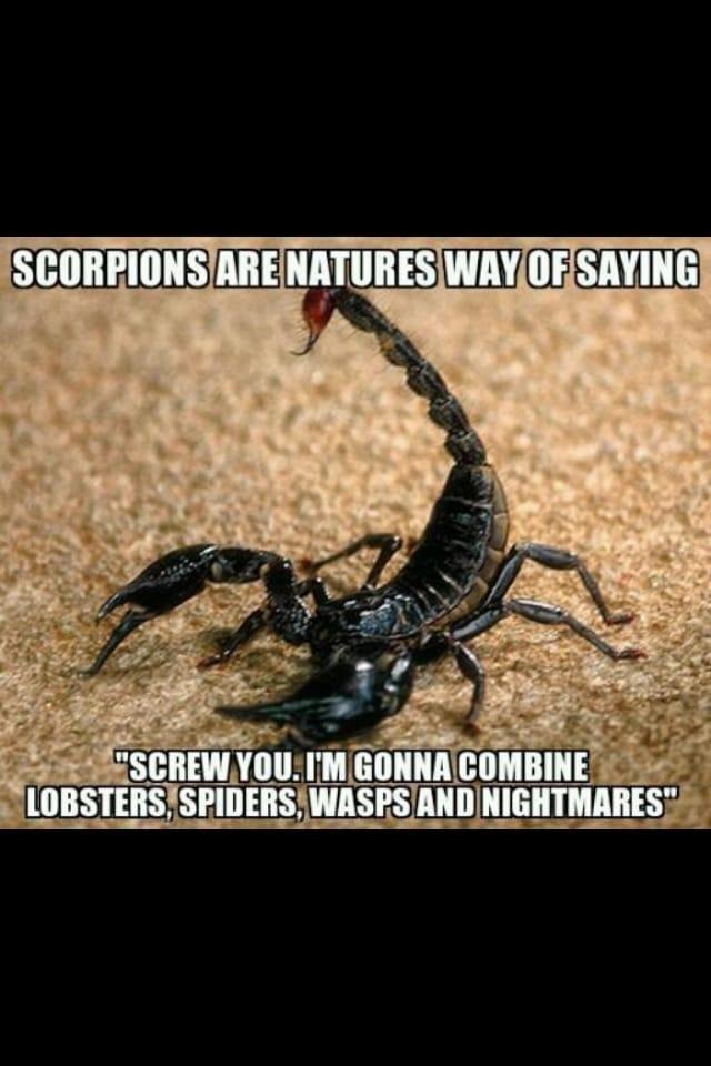 natures-way-of-saying